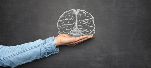 TESU-blog-person-holding-brain.jpg