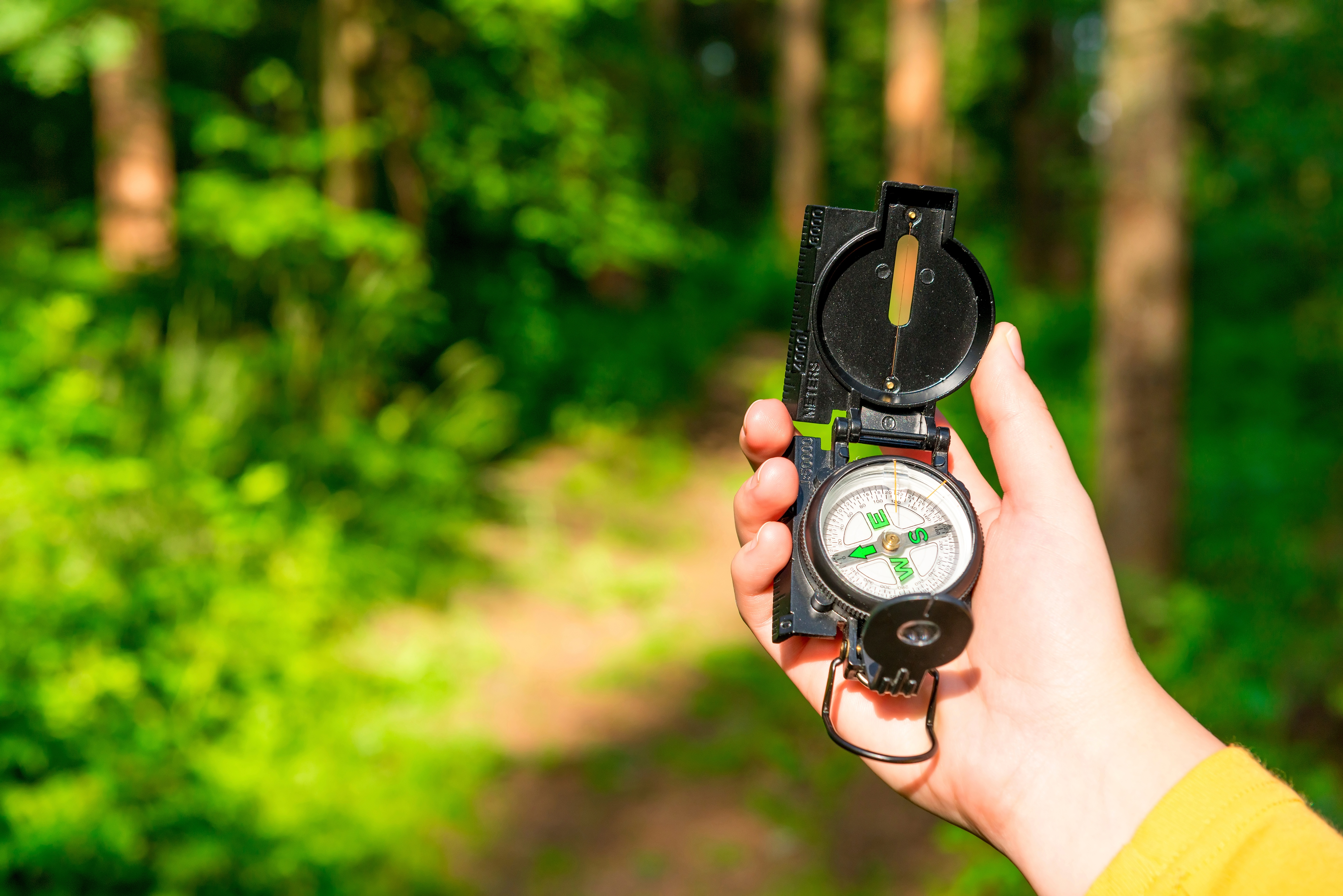 compass in a female hand lost in the woods